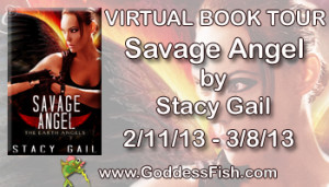 VBT Savage Angel Banner