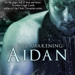 The Awakening- Aidan by Abby Niles